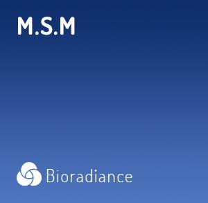 M.S.M 700 - 90 Gélules