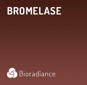 Bromelase - 60 Gélules
