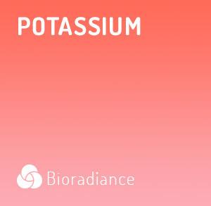 Potassium - 60 Gélules
