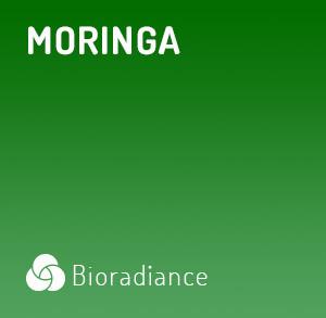 Moringa - 60 Gélules