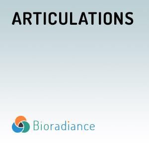 Articulations - 30ml