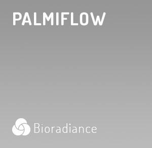 Palmiflow - 60 Gélules