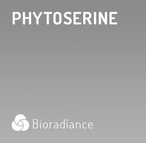 Phytoserine - 60 Gélules