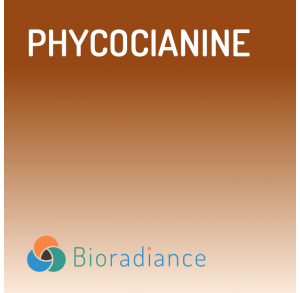 Phycocyanine - 21 Ampoules
